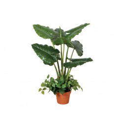 PLANTA ARTIFICIAL TARO